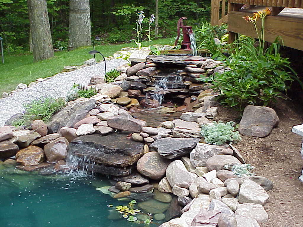 A Pond Clean Can Extend The Life Of Your Pond